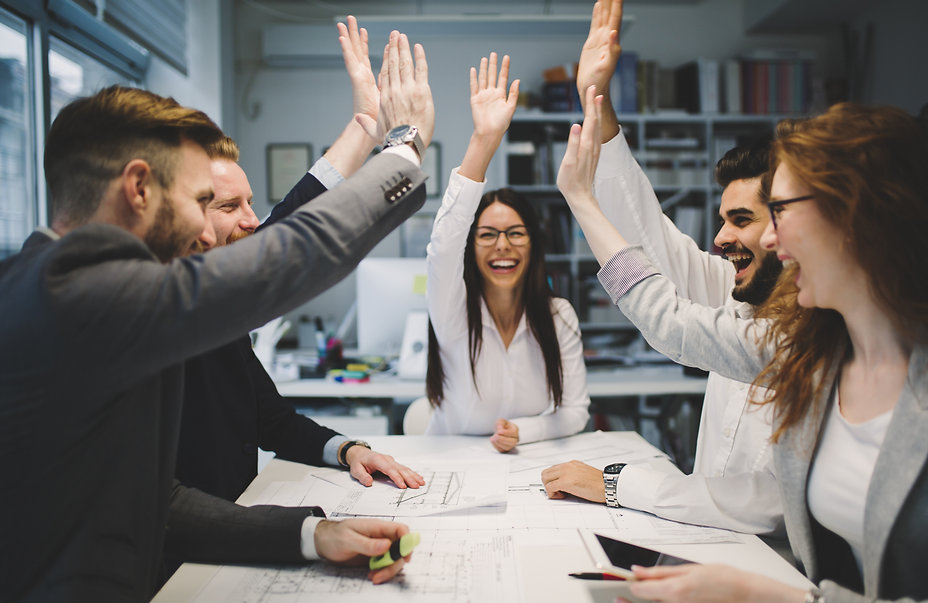 Successful Professionals   Topanga HR