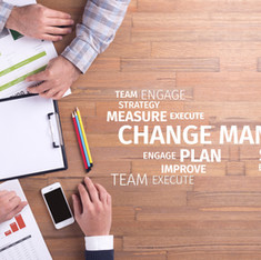 Change Management and M&A's