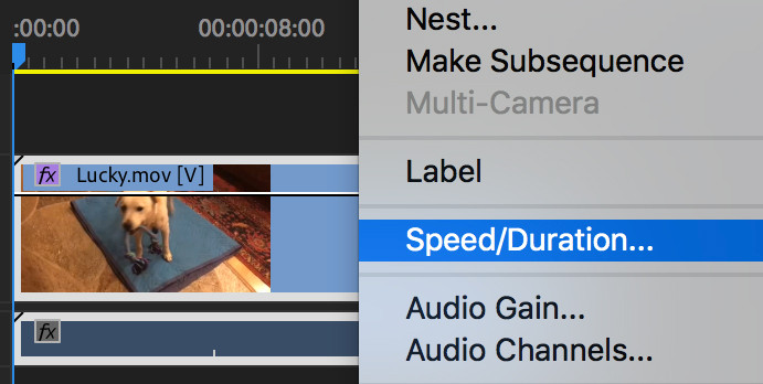 the 'speed - duration' window in adobe premiere pro which is used to change video playback speed