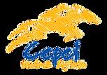 Logo_Escola PNG.png