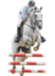 horse-jump_2017.png