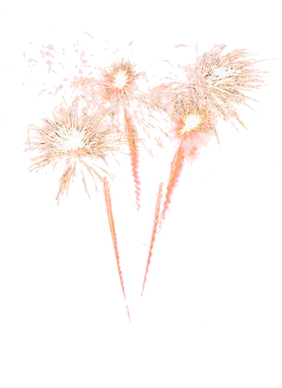 fireworks_PNG15665_edited.png