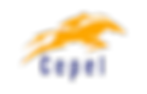 Logo_Cepel PNG.png