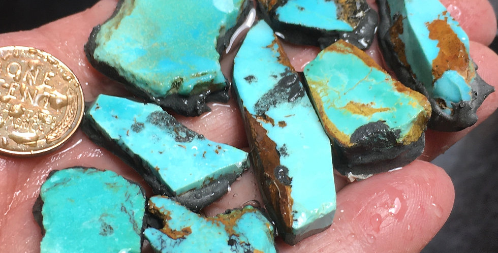 Nevada Blue Turquoise Cutting Rough-Backed Preforms