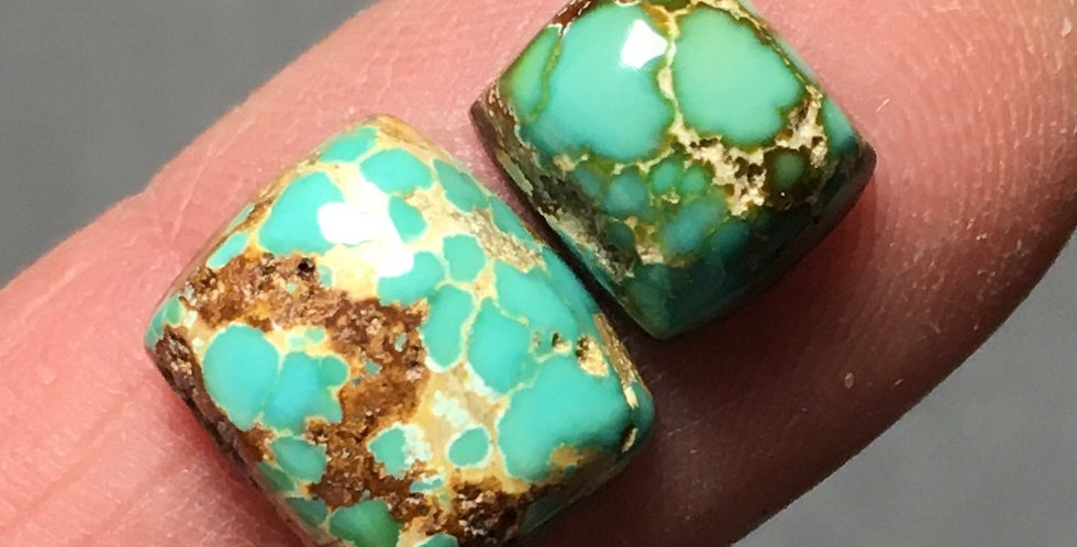 Ajax Turquoise Cabochons