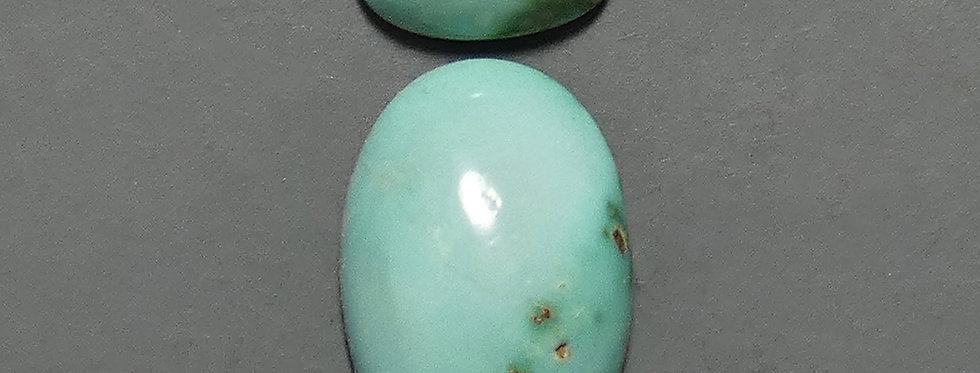 Ajax Turquoise Calibrated Cabochon Set
