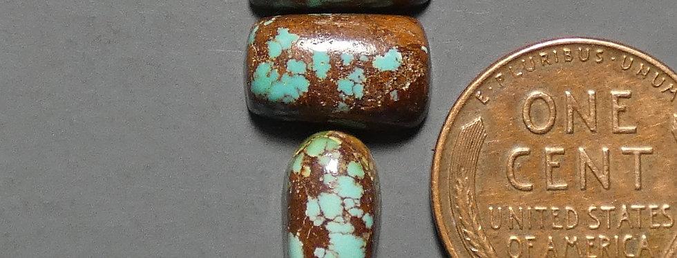 Carmelita Mine Natural Turquoise Cabochon Set