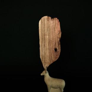 Lynn 10  10 x 6 x 27 cm 木 / wood 2016