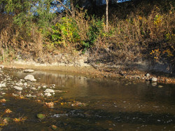 Before - eroding streambank