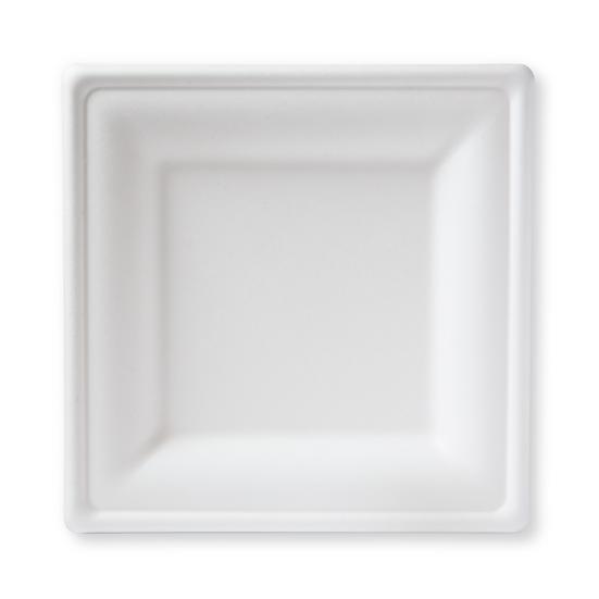 "BP-10S 100% Compostable Sugar Cane Heavy Duty Plate, 10"", White Combo Kit"
