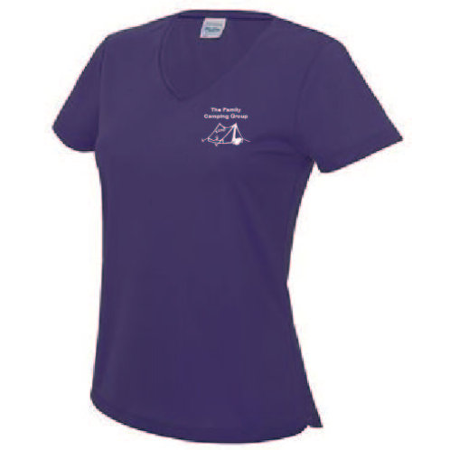 Ladies V neck Cool T