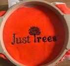 justtrees_edited.jpg
