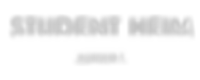studentheim_logo.png