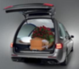 Rear coffin.jpg