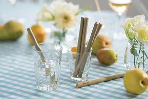 2_Bamboo_straws-bambu_365fdc_1200x_2x.jp