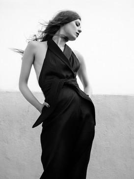 Paloma - Darren Moriarty.jpeg
