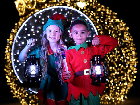 Introducing Our Enchanted Elves!