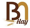 B Hay