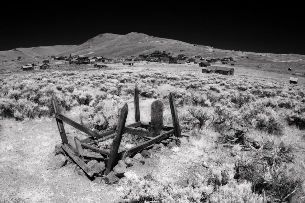 Infrared4.jpg