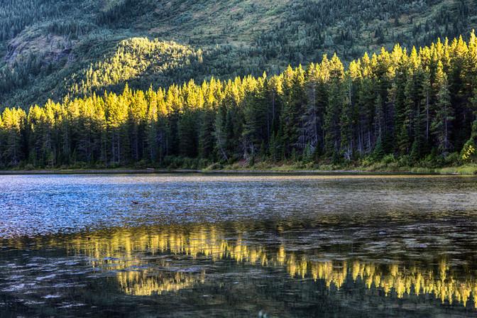Canadian Rockies5.jpg