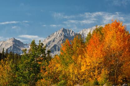Eastern Sierra 11.jpg