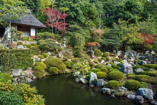 Kyoto28.jpg