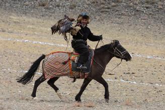 Mongolia Eagle Hunter 32.jpg