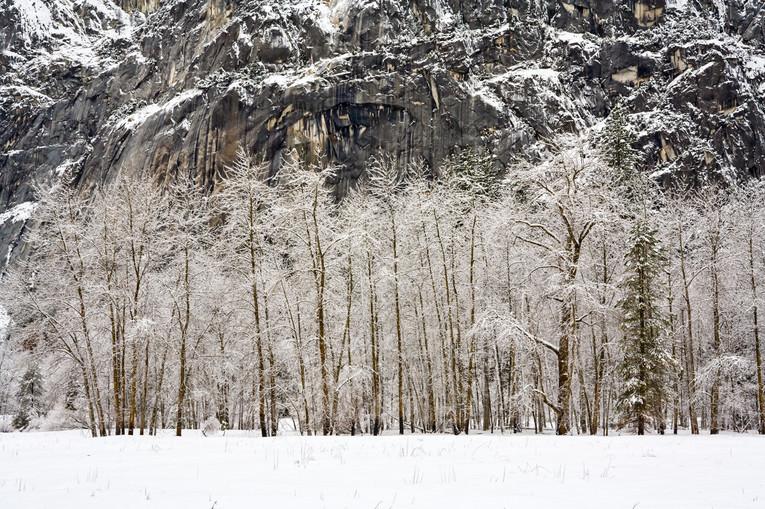 Yosemite in Winter 22-2.jpg