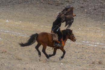 Mongolia Eagle Hunter 25.jpg