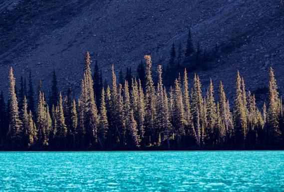 Canadian Rockies20.jpg