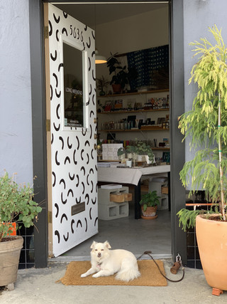 Pup Charlie could usually be found guarding the shop.