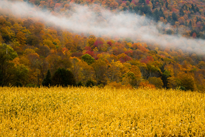 Vermont in Fall14.jpg