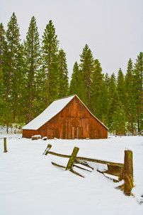 Yosemite in Winter 10.jpg