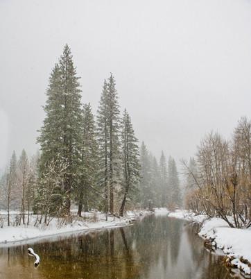 Yosemite in Winter 12.jpg