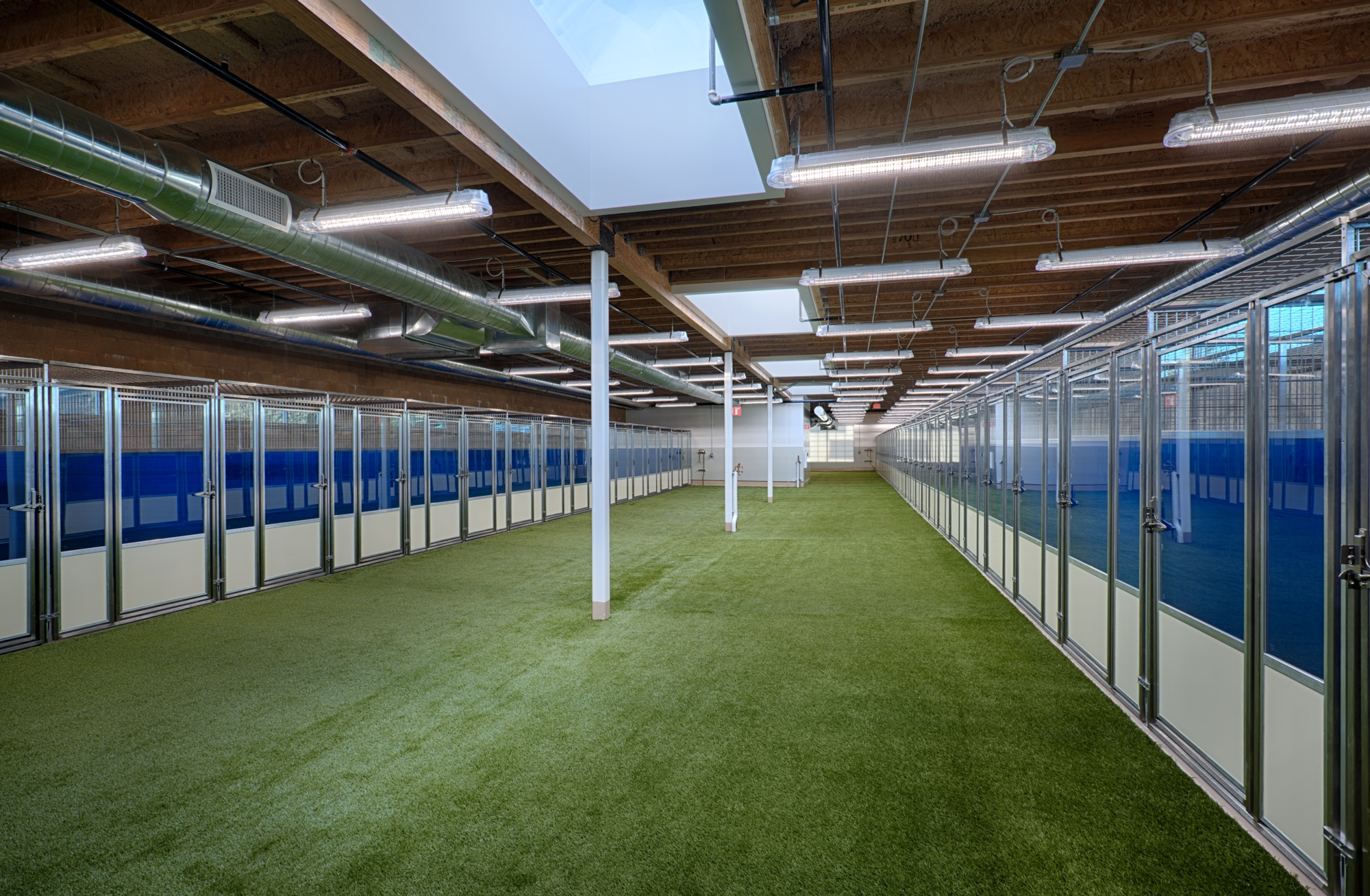3.Enclosed Kennel with Skylights