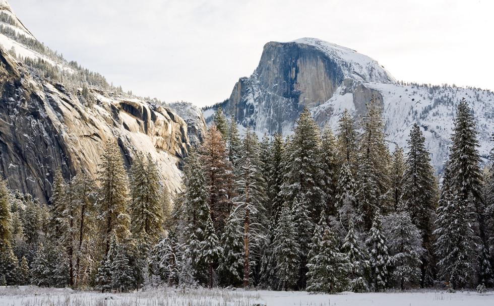 Yosemite in Winter 20.jpg