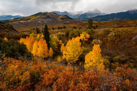 Western Colorado in Autumn 5