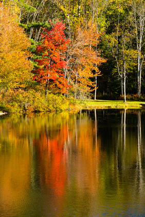 Vermont in Fall9.jpg