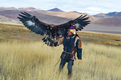 Mongolia Eagle Hunter 13.jpg