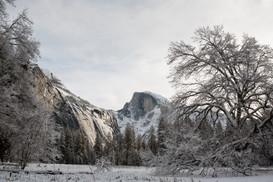 Yosemite in Winter 21.jpg