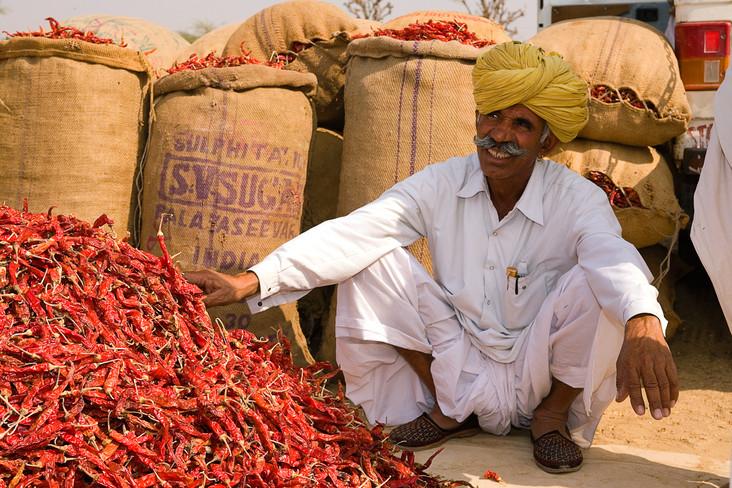Faces of Rajasthan-50.jpg