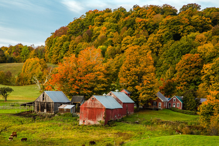 Vermont in Fall6.jpg