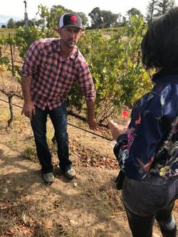 beckmen vineyard tour jessica