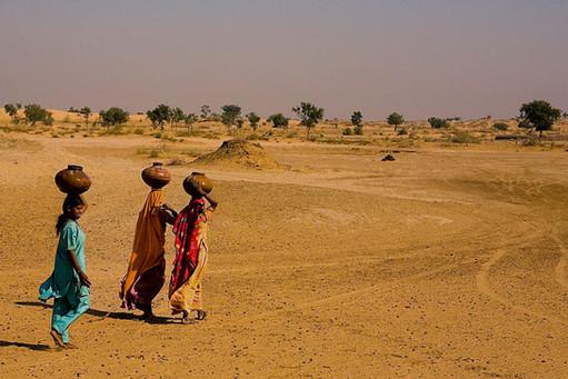 Faces of Rajasthan-39.jpg