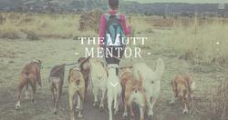 The Mutt Mentor