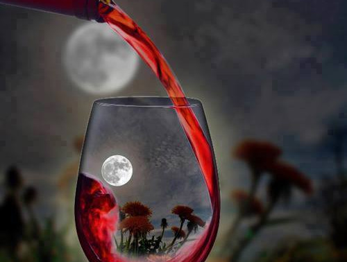 Does the moon influence how a wine tastes? Biodynamics in brief