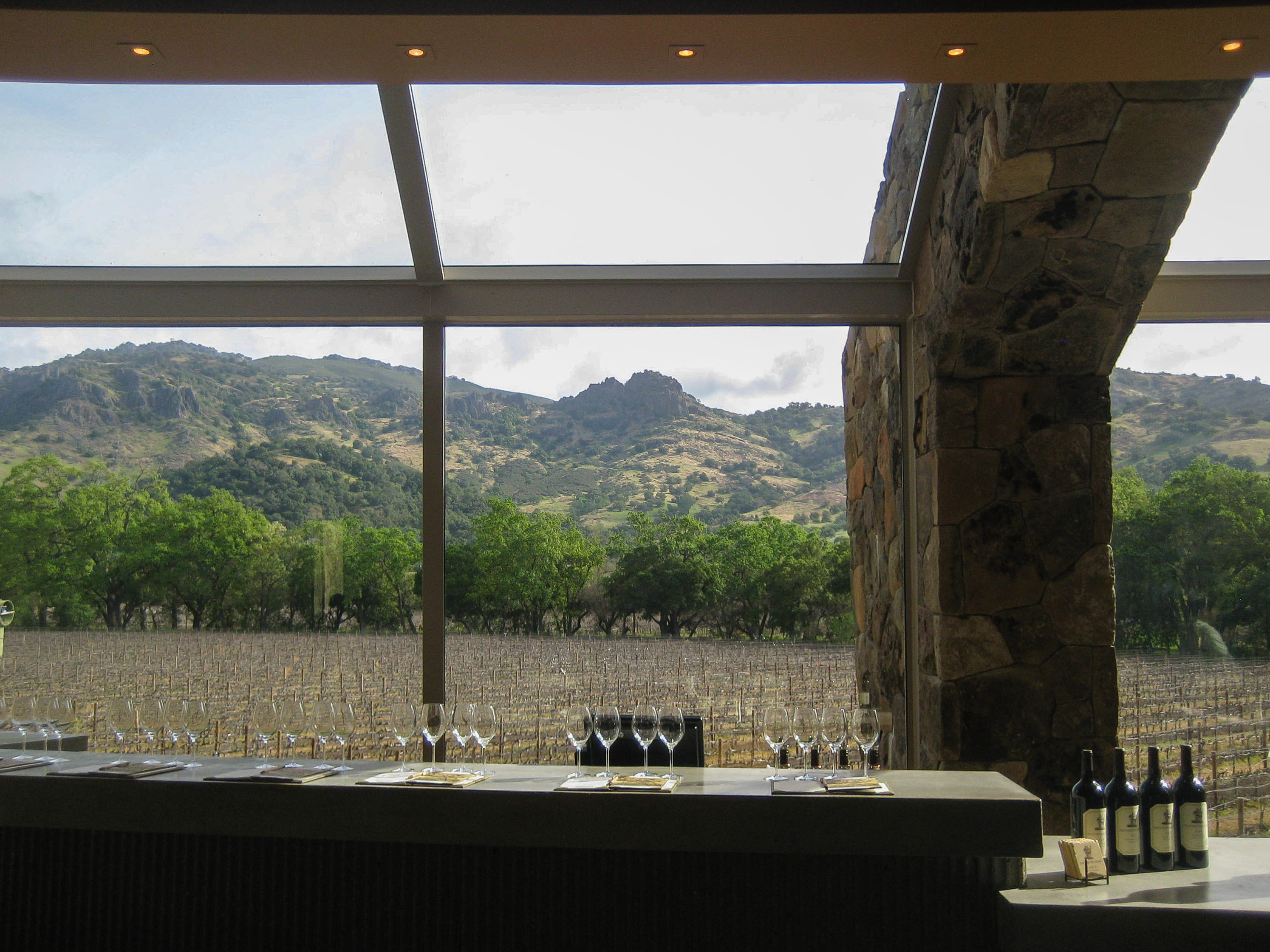 4. SLWC Wine Tasting with a View
