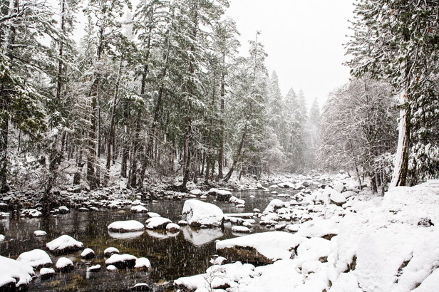 Yosemite in Winter 11.jpg