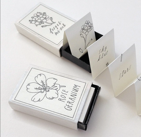 Accordion Flower Studies Matchbook by Janis Anzalone.