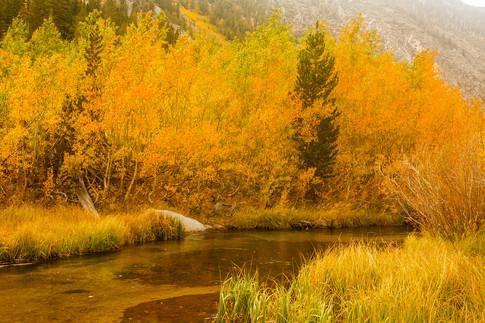 Eastern Sierra 15.jpg